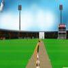 Мастер игры в крикет (Cricket Master)