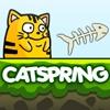 Кэтспринг (Catspring)