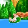 Лиса на речке (Fox on a River)
