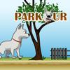 Паркур (Parkour)