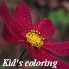 Королевство цветов: Цветочный сад. (Kingdom of the flowers: Garden flowers)