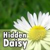 Поиск маргариток (Hidden Daisy)
