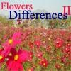 Цветочные различия - 2  (Flowers Differences 2)