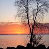 Пазл: Тихий закат (Jigsaw: Silent Sunset)
