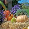 Пазл: Декор на Хэллоуин (Jigsaw: Halloween Deco)