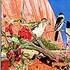 Пятнашки: Птички (Lovely birds slide puzzle)
