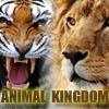 Вопросы о животных (Animal Kingdom Quiz)