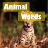 Поиск слов: Животные (Animal Words)