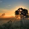 Пазл: Закат (Sunset)