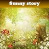 Пять отличий: Солнечная история (Sunny story)