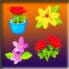 Двойные карточки: Цветы (Springtime Flower Match)