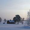 Пазл: Домик в снегах (Winter House)