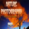 Поиск чисел: На природе (Nature Photography - Find the Numbers)
