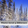Пять отличий: Зимний лес (Winter forest 5 Difference)