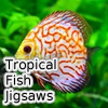 Пазл: Тропические рыбки (Tropical Fish Jigsaw Tournament)