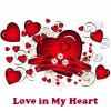 Пять отличий: Любовь в моем сердце (Love in My Heart)