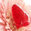 Пять отличий: Счастливая любовь (Happy love 5 Differences)