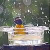 Передвижной пазл: Дождь и птичка  (Rain and bird slide puzzle)