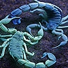 Пятнашки: Скорпионы (Blue Lobsters slide puzzle)
