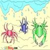 Раскраска: Крабы (Crab Coloring)