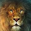 Пазл: Король лев (King lion puzzle)