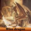 Пять отличий: Мудрость драконов (Wise dragon 5 Differences)