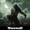 Пять отличий: Оборотни (Werewolf 5 Differences)