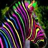 Передвижной пазл: Цветная зебра (Colorful zebra slide puzzle)