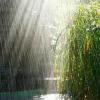 Поиск чисел: Летний дождь (Summer rain find numbers)