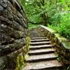 Пазл: Лестница (Stones Path)