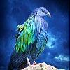 Пятнашки: Фантастическая птица (Lovely blue bird slide puzzle)