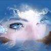 Пять отличий: Иллюзии (Illusion of life 5 Differences)