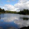 Пазл: Озеро Алгонкин (Algonquin Jigsaw)
