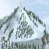Лыжная гонка (Ski Race)