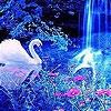 Поиск чисел: Природа и животные (Nature and animals hidden numbers)