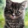 Пятнашки: Котенок (Strange cat slide puzzle)