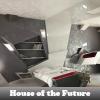 Поиск предметов: Дом будущего (House of the Future)