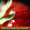 Пять отличий: Клубничная ферма (Strawberry farm)