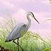 Пазл: Цапля на озере (Heron in the lake puzzle)
