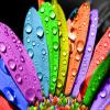 Поиск чисел: Яркие цвета (Bright colors find numbers)