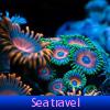 Поиск предметов: Морское путешествие (Sea travel. Find objects)
