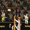 Волейбол: Зайки олимпийцы (BunnyLimpics Volleyball)