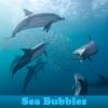 Пять отличий: Морские шарики (Sea Bubbles 5 Differences)