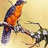 Пазл: Листья и птичка (Leaves and bird puzzle)