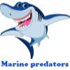 Пять отличий: Морские хищники (Marine predators)