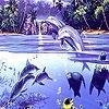 Пазл: Игры дельфинов (Crazy dolphins puzzle)