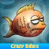 Поиск предметов: Безумные рыбки (Crazy fishes. Find objects)