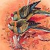 Пазл: Две птички (Two lonely bird puzzle)