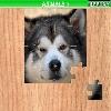 Пазл: Животные 7 (Animals 7)