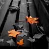Поиск чисел: Осенние дни (Autumn Day find numbers)